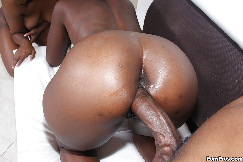 Chocolate ebony porn