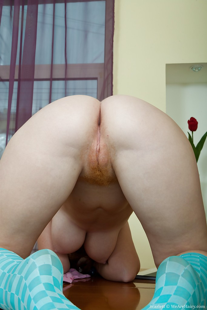 Can help redhead big tits dildo opinion