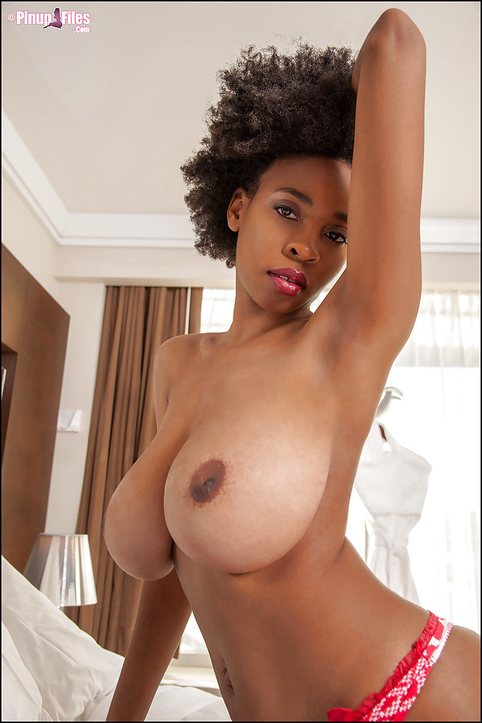 big ebony Young tit