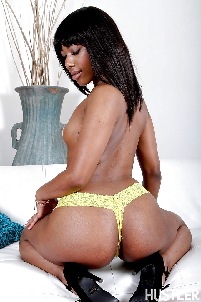 Ebony babe pornstars agree