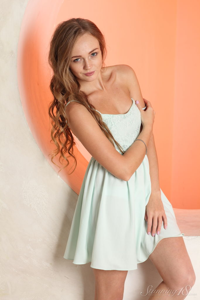 Nice teen girl Andrea Sixth uncovers her small tits as she takes off her dress № 1629853 бесплатно
