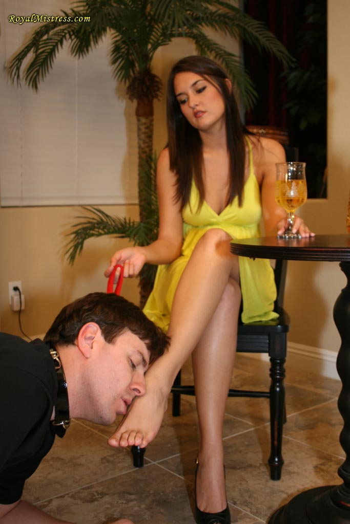 female domination and humiliation