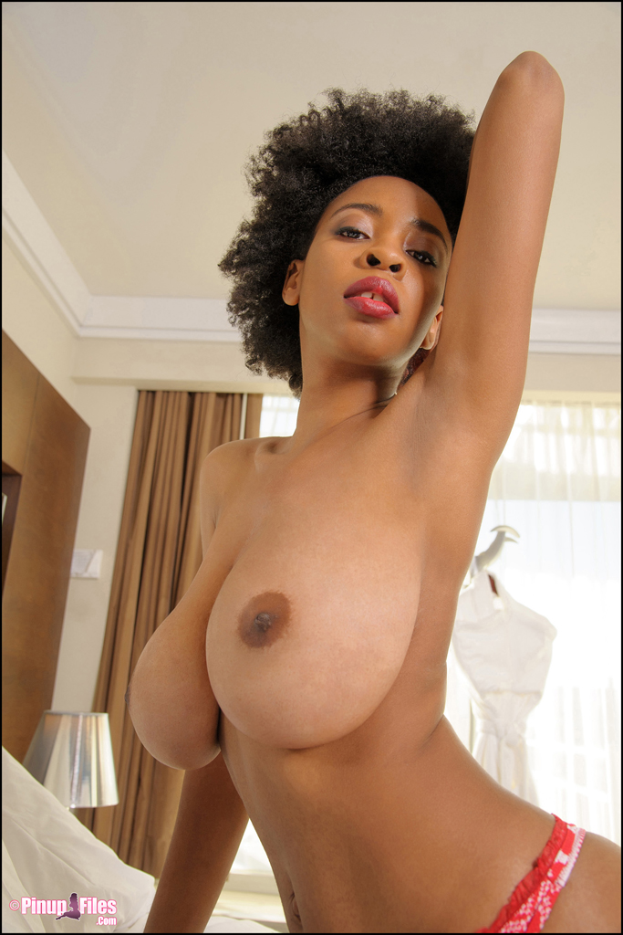 ebony big titis