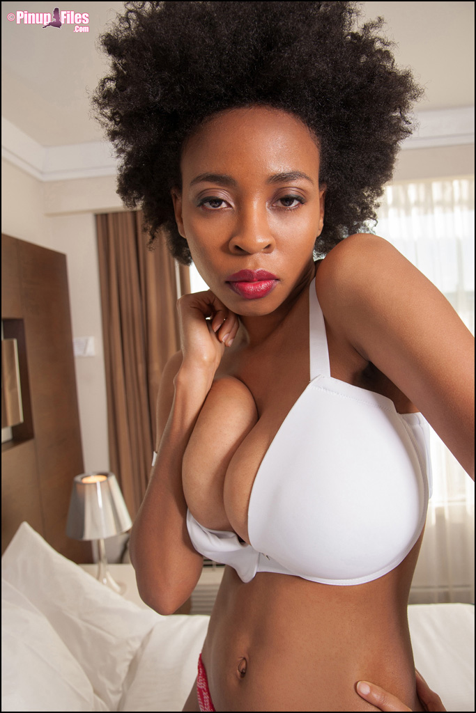 Ebony Lingerie - Tasty Blacks. Free Ebony Black Sex Tube.