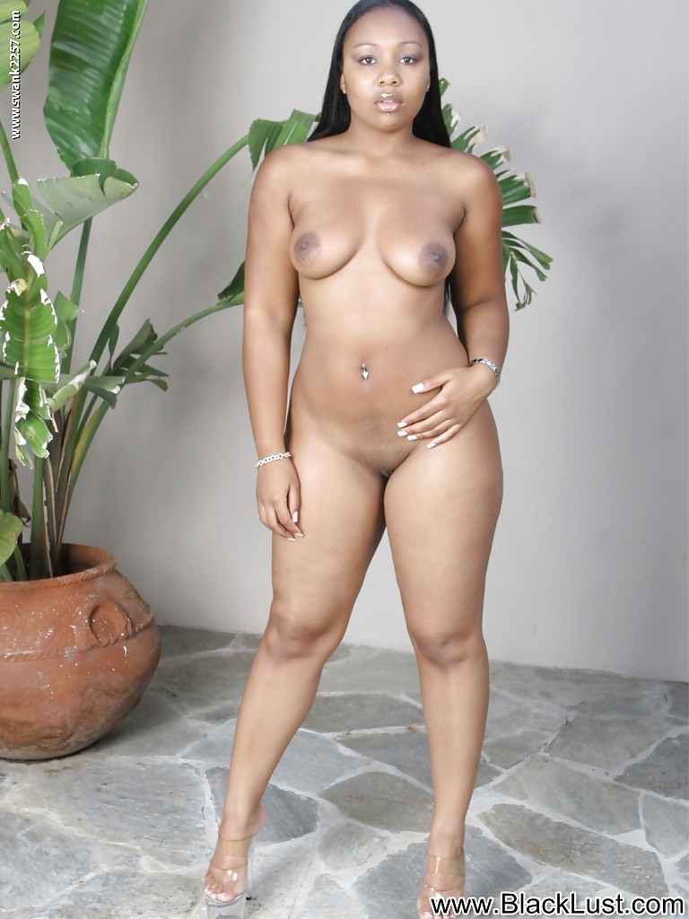 Are not bbw pornstars nude