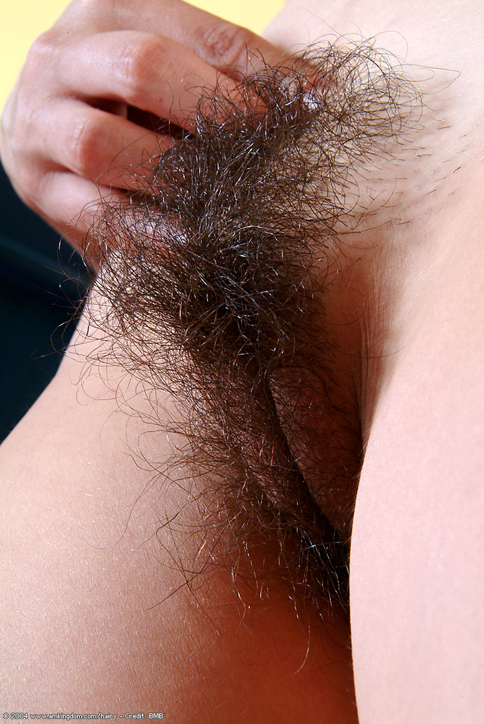 Consider, that hairy pussy close ups simply remarkable