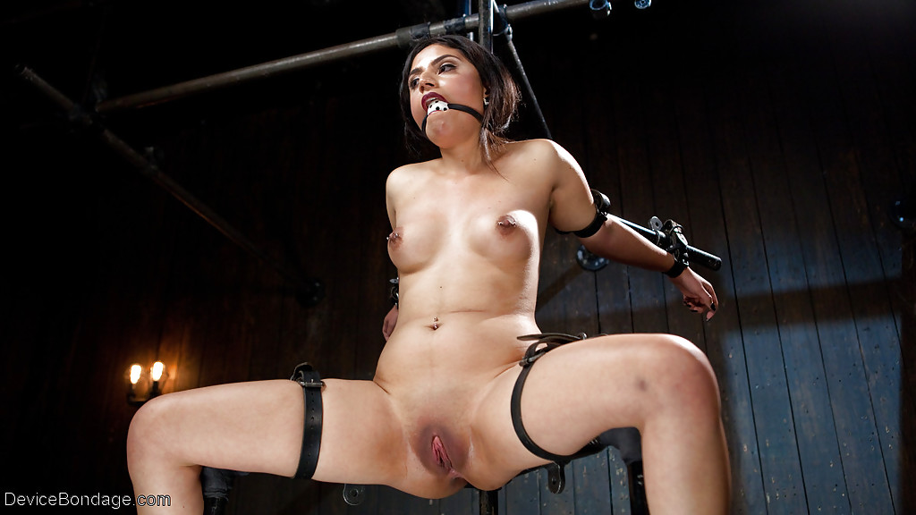 bondage-pussy-powered-by-phpbbtures
