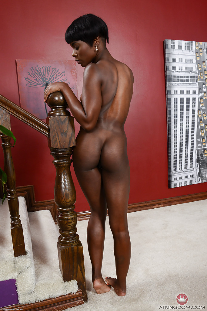 Pity, that ana foxxx black ebony porn pics idea