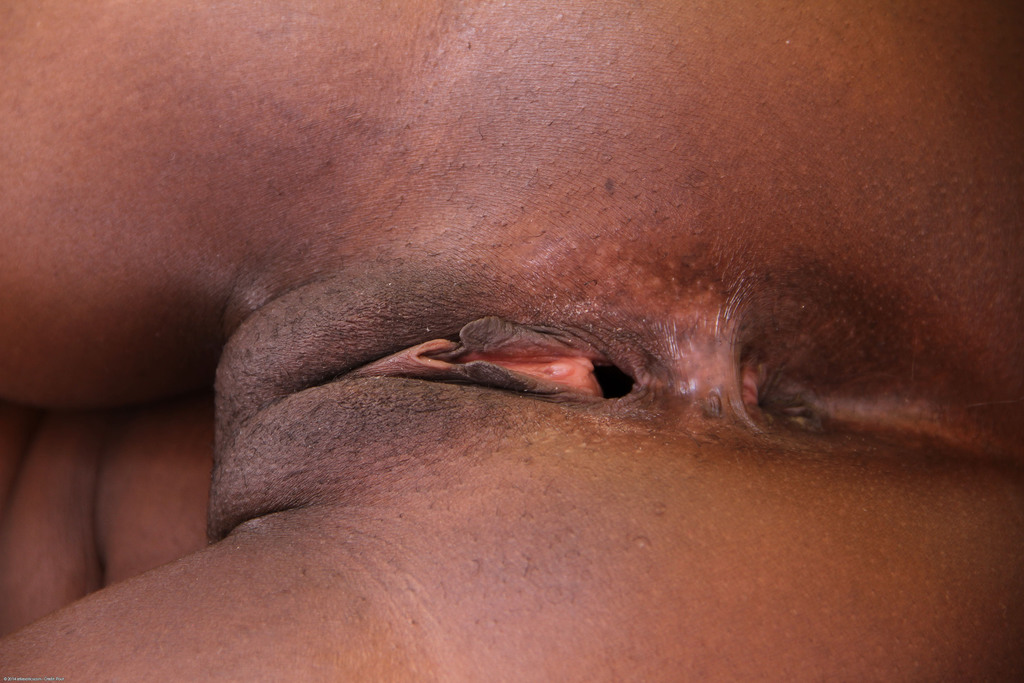 Absurd ebony pussy display porn gallery all clear