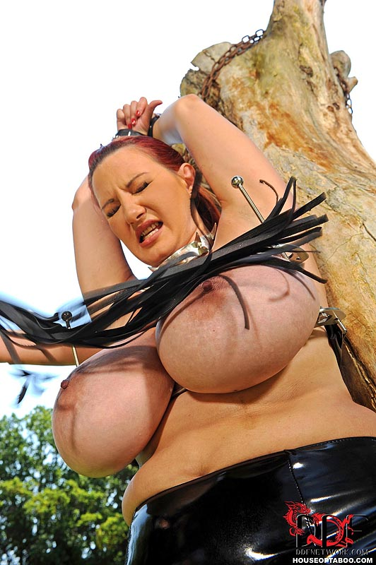 Big tits bdsm videos