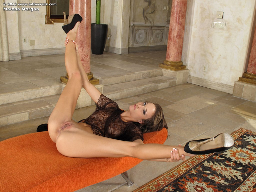 Slim brunette beauty Malena loves showing off her bald vagina porn photo #324892109 | In The Crack, Malena Morgan, Ass, Babe, Close Up, Clothed, High Heels, Legs, Nipples, Panties, Pussy, Shaved, Skirt, Spreading, Tiny Tits, mobile porn