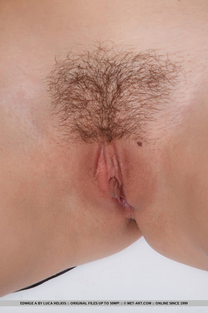 Close up trimmed pussy