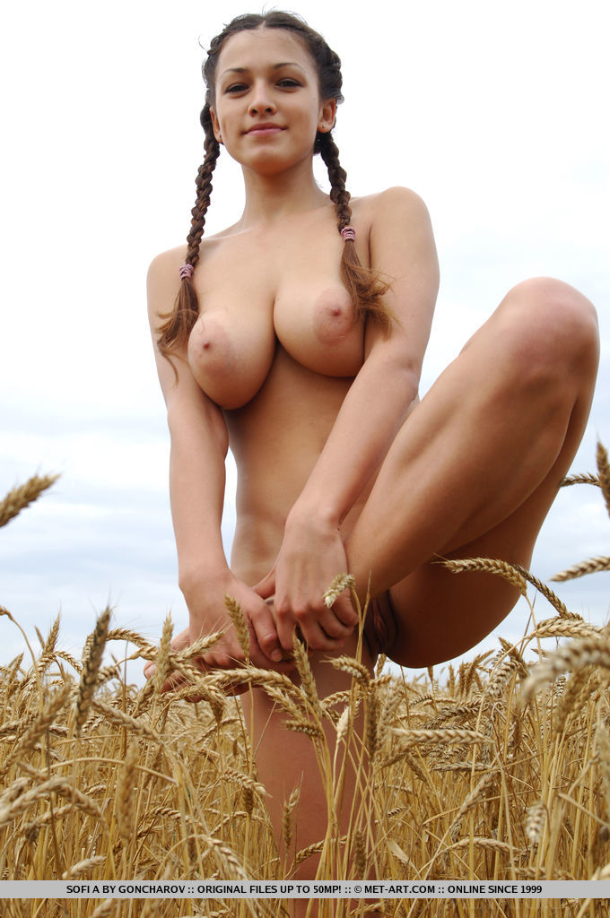 Something also Beautiful naked girl pigtails