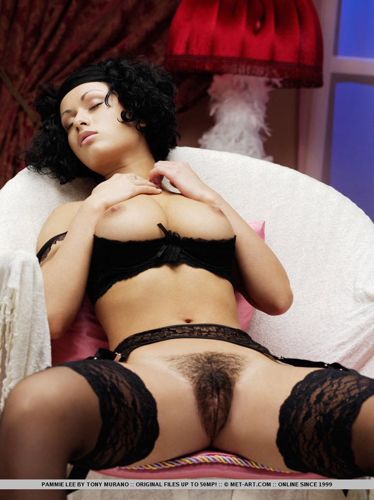 Ebony Hairy Erotica