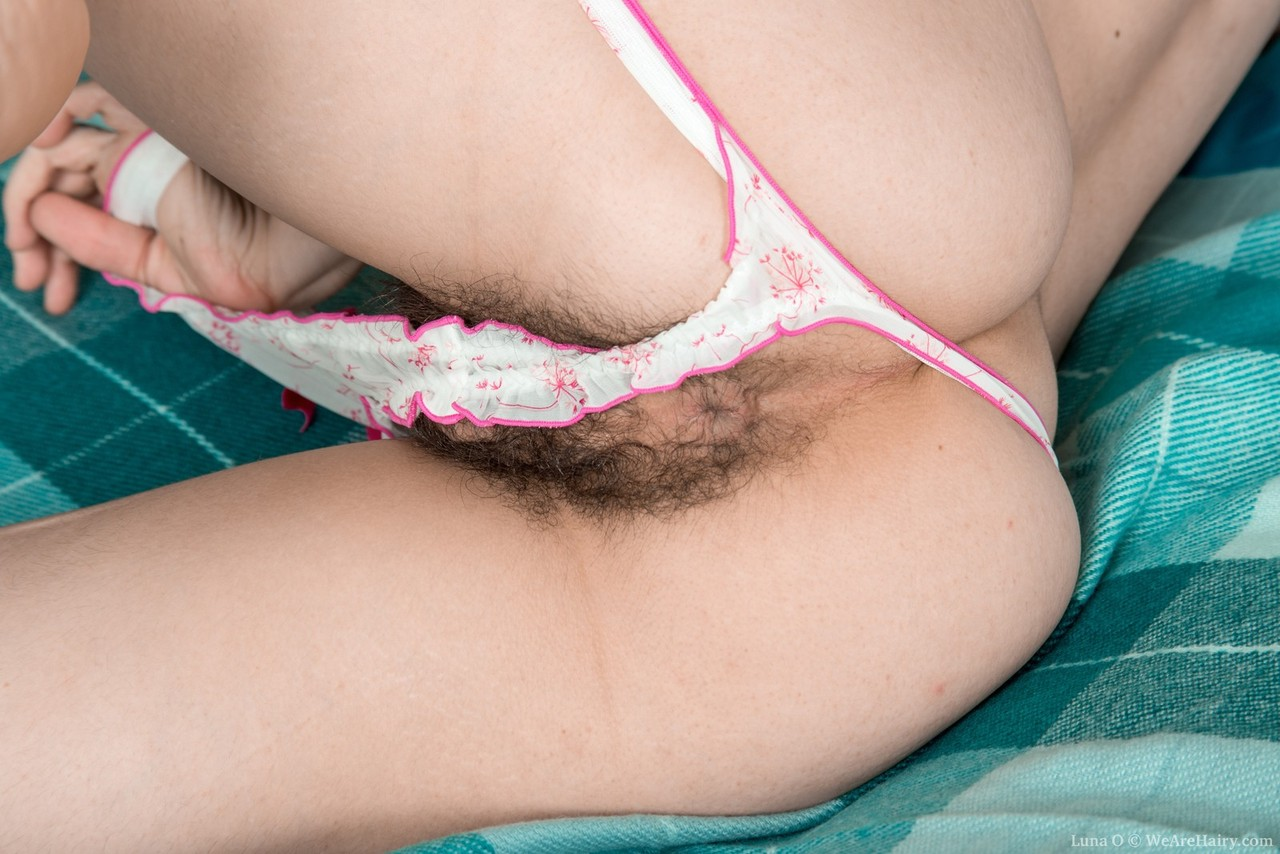Question sorry, hairy ladies in panties