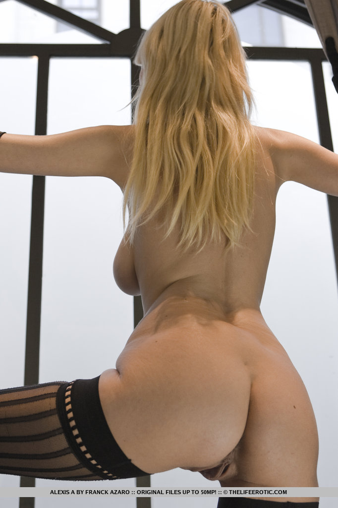 Blonde glam model Alexis A poses in long gloves and sexy stockings