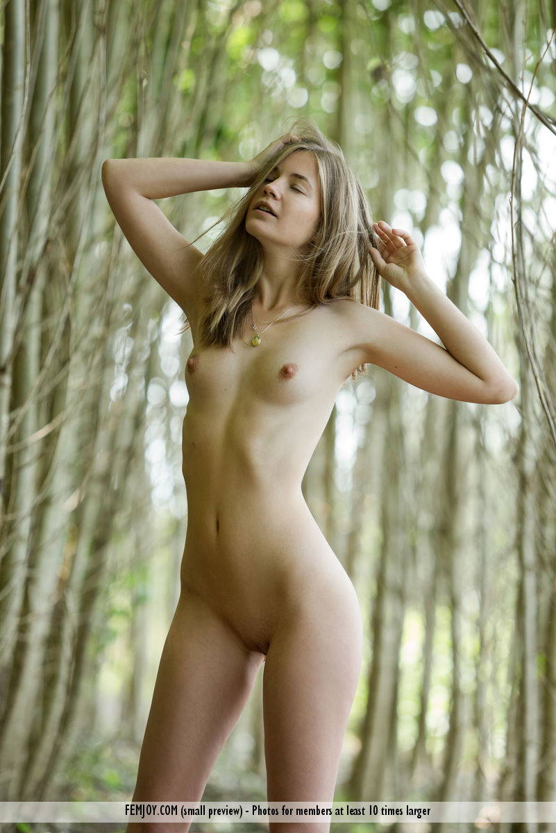 Yes And wood nymph nude forest that