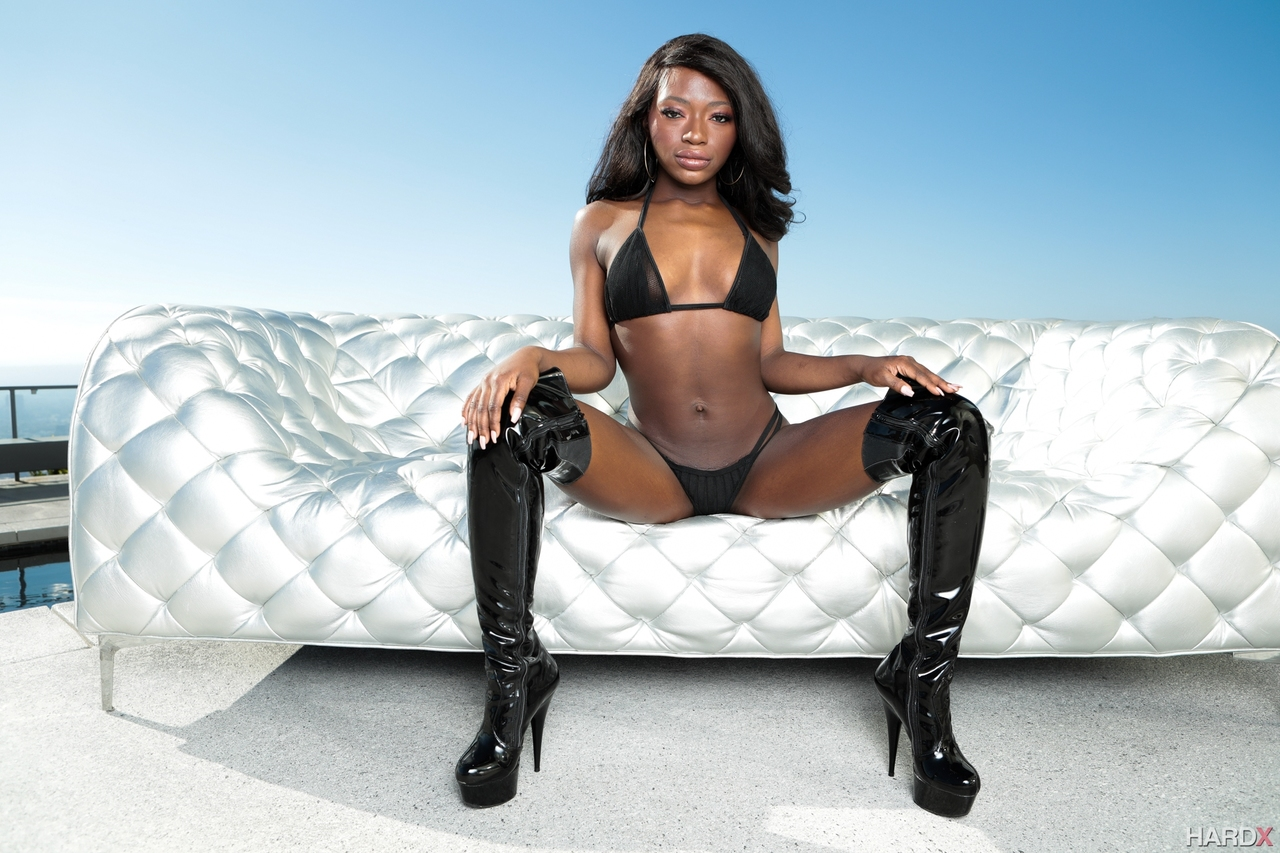 Ebony dong for white ass hole